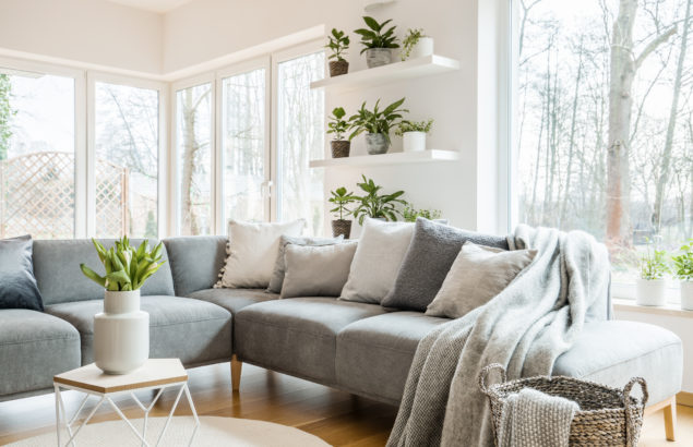 Healthy Headspace: Curating your home to attract positive 'mind space'